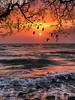 Have a wonderful morning all my friend ☀️😊☺️🙏 by basem_teacher