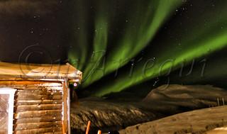 Cuando cae el año.... Aurora se pone sus galas | by mArregui
