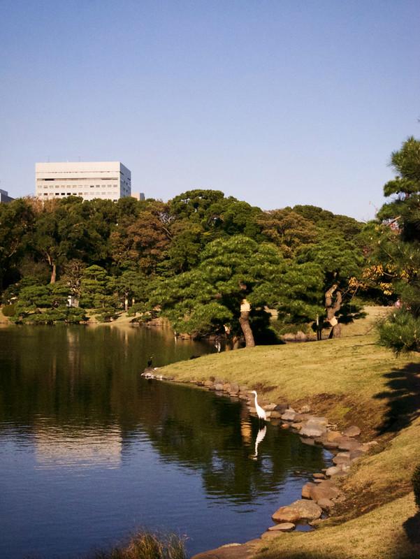 871-Japan-Tokyo