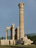 Chrám Dia Olympského, Athény, foto: Petr Nejedlý