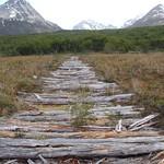 Sierra Valdivieso Trekking38