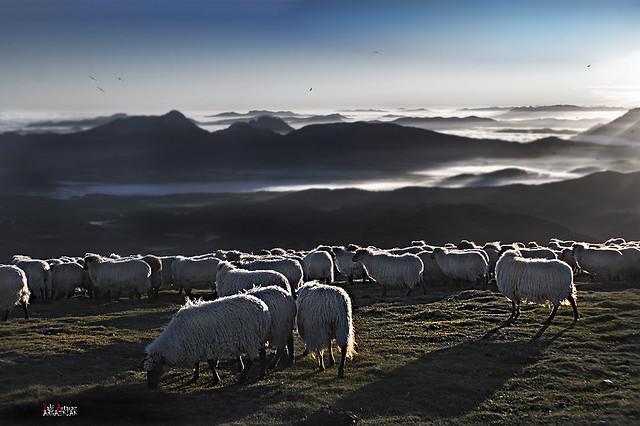Vista desde Gorbea una mañana de luz