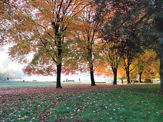 Autumn at Trout Lake | by Ruth and Dave