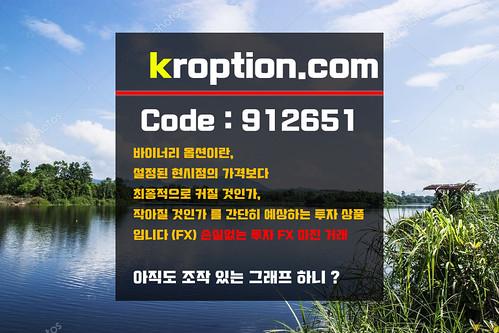 코리아옵션 마진거래 코드:912661 주소:kroption.com