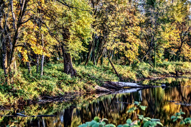 Autzen Pond ~ Autumn HDR
