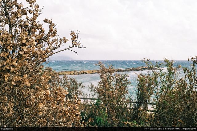 Storm at Sea (Canonet)