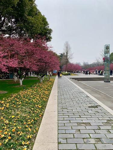 changzhou china hongmei
