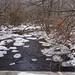 Winter on the creek 6 by angelbrd59@yahoo.com