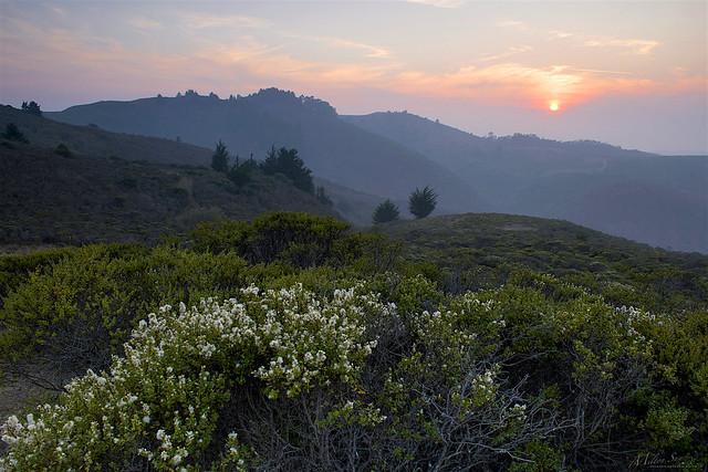 Light Twilight over the Hills