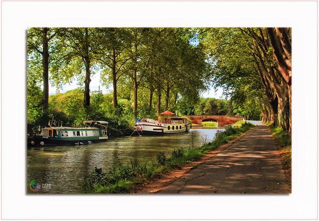 Le Canal du midi chemin de halage