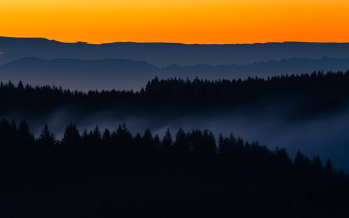 sunrise morning landscape smoke trees nature layers bandon orgeon pacific northwest canoneos5dmarkiii canonef100400mmf4556lisusm longexposure wallpaper background