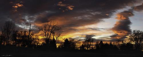 colorado landscape winter clouds cold dawn magichour morning morninglight panorama silhouette sunrise trees
