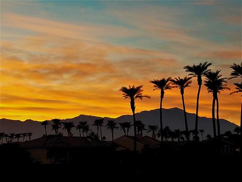 sunset desert california sky orange palms photography color pure silhouette palmsprings vivid montains san jacinto clear trees light vista landscape geography senic inspiration