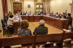 Momento de la votación de una de las enmiendas para las Ordenanzas de 2019.
