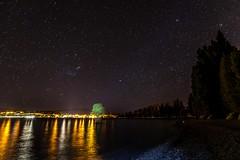 The Wanaka Tree At Night-1