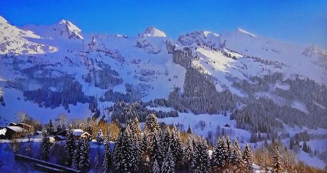 SWITZERLAND - Winter landscape
