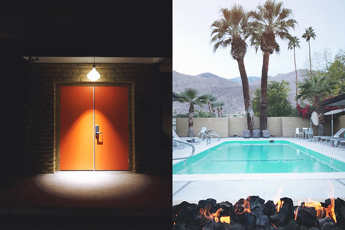 Palm Springs Anniversary | by Skunkboy Creatures.