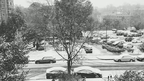 Cleveland Park snow timelapse