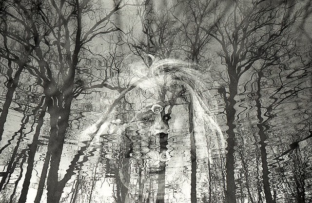 Drowning victim 2 / multiXposure / Ilford HP5+ negative film