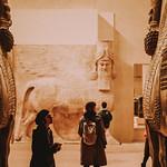 feelings to Egypt