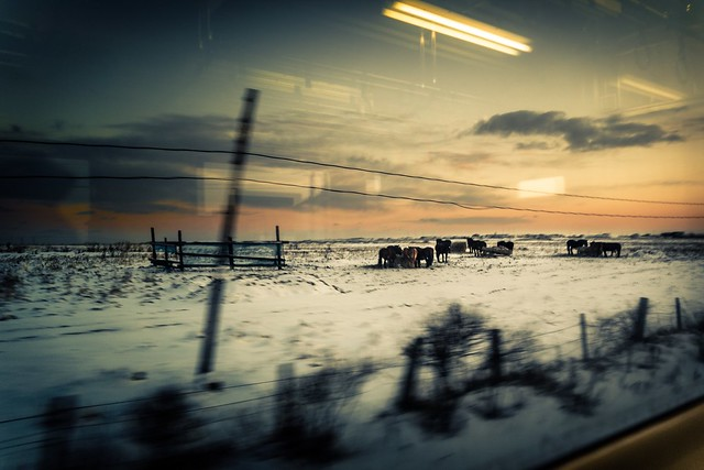 Sunset train window