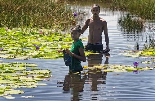 trinidadandtobago tt pitchlake pitch lake asphalt village trini boy girl d70028300 water lotus trinidadian swimming play