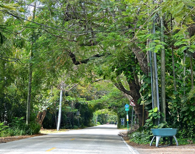Main Highway (Old Cutler Road)