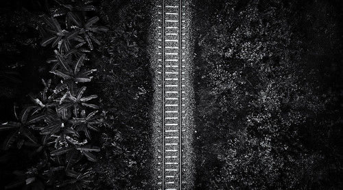 2018 bangalore digitalphotography india kerala photography quilon rubenalexander susanalexander thewandererseyephotography above abstract aerialview background countryside dramatic drone dronephotography forest gravel green highcontrast infrastructure iron jungle kotarakkara landscape line metal middle monochrome nature parallellines parallels parallelsmeetatinfinity perspective pov rail railroad rails railway sleepers steel topview track train transportation vegetation