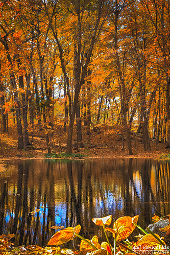 hdr autumn landscape arboretum minnesotalandscapearboretum canon canon6d minnesota pselements vonwahlde fall orange trees reflection water