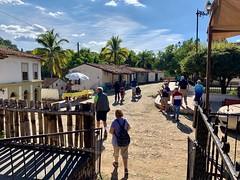Mazatlán, 2018 - 64 of 97