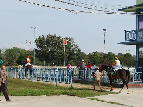チェンマイ競馬場のスタンドを通って本馬場に向かう