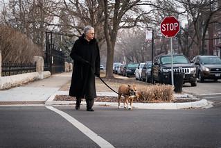 Dog Walk   by trapgosh