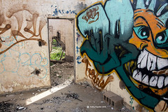 Abandoned House 8097