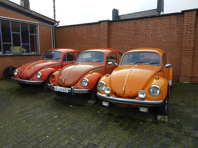 Volkswagen Kever in Selfkant 03-01-2019