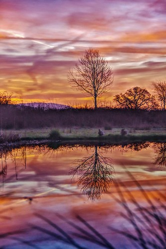 hdr sunrise pond water sun sky trees colour light morning shropshire clouds reeds