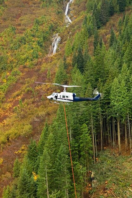 Heli Logging 24