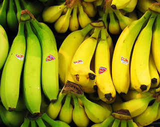 Yes, I Have No Bananas | by Sharon Mollerus