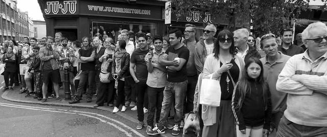 Deilgyll gwyrddrisg am gwisgai* - TFNB / WNBR, Brighton