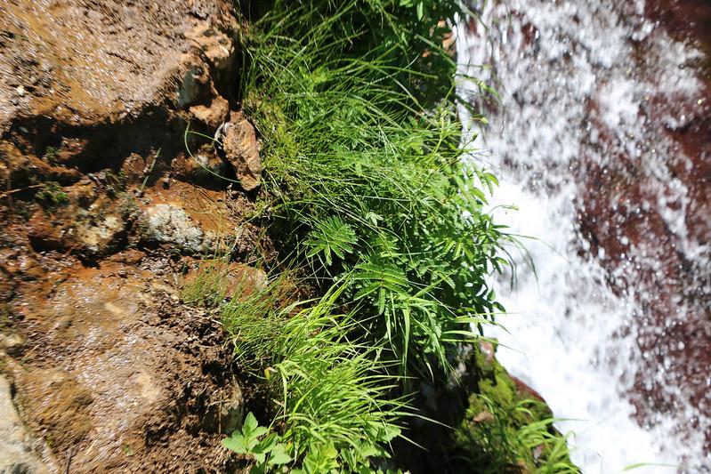 2014-07-22_02771_北海道登山旅行.jpg