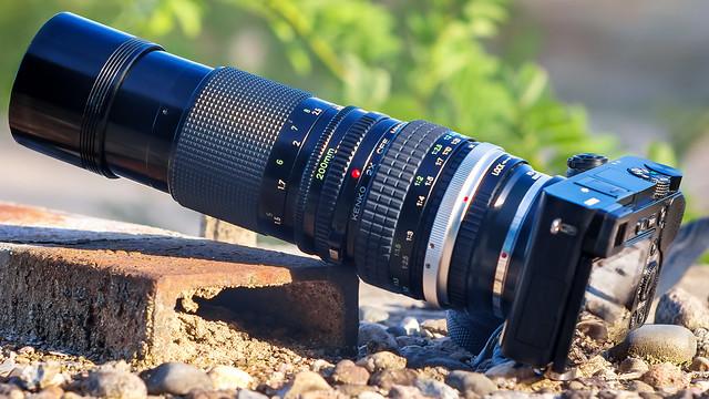 CANON nFD 200mm ƒ/4 IF & Kenko-Tokina 2x CFE Macro Teleplus MC7 on SONY ⍺6000