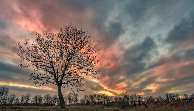 December dusk
