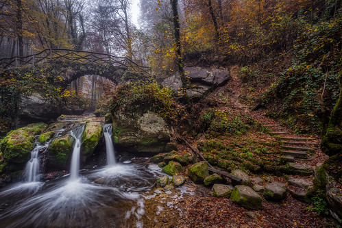 luxemburg luxembourg mullerthal brug bridge natuur nature trap stairs waterval waterfall