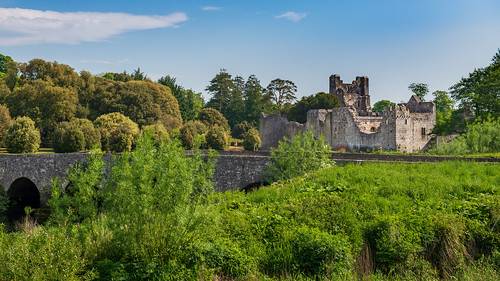 architecture bridge castle desmondcastle ireland ruins shawnharquail travel building desmond grass greenery landscape outdoor river shawnharquailcom travelphotography trees