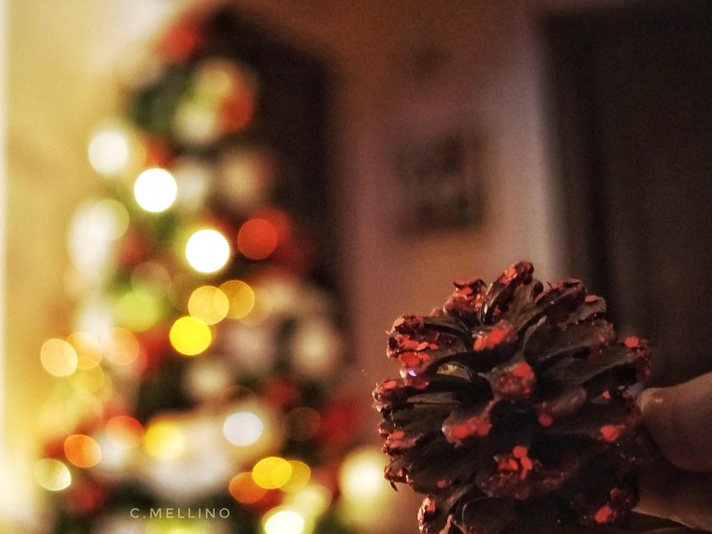 Feliz Navidad!Merry Christmas! Buon Natale!