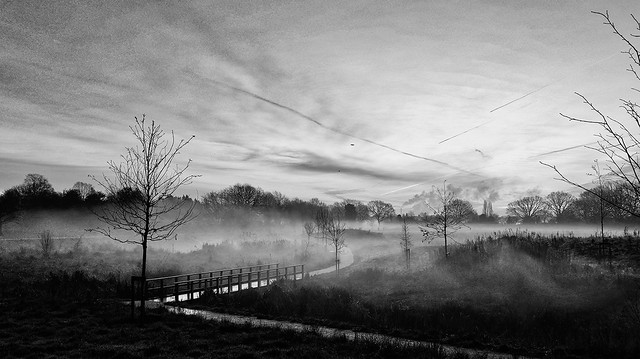 Fields unther the morning fog