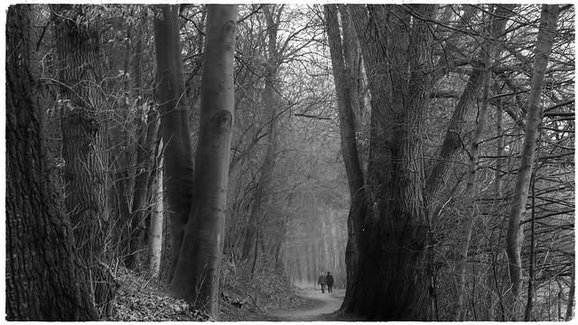 Wanderweg am Herrenteich....