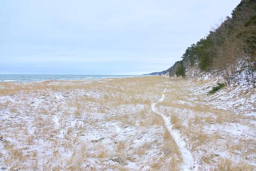 path lake lakeshore lakemichigan beachgrass beach woods dunes snow