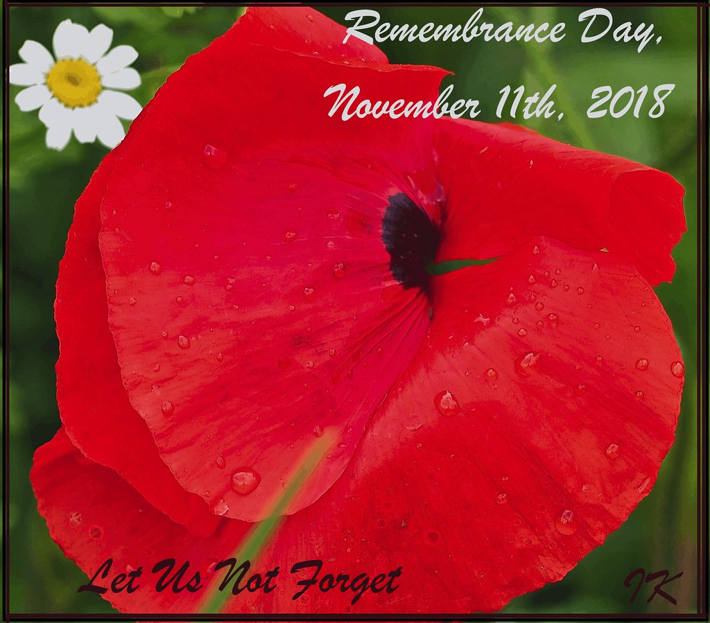Remembrance Day 2018     | Let us not forget all the Fallen