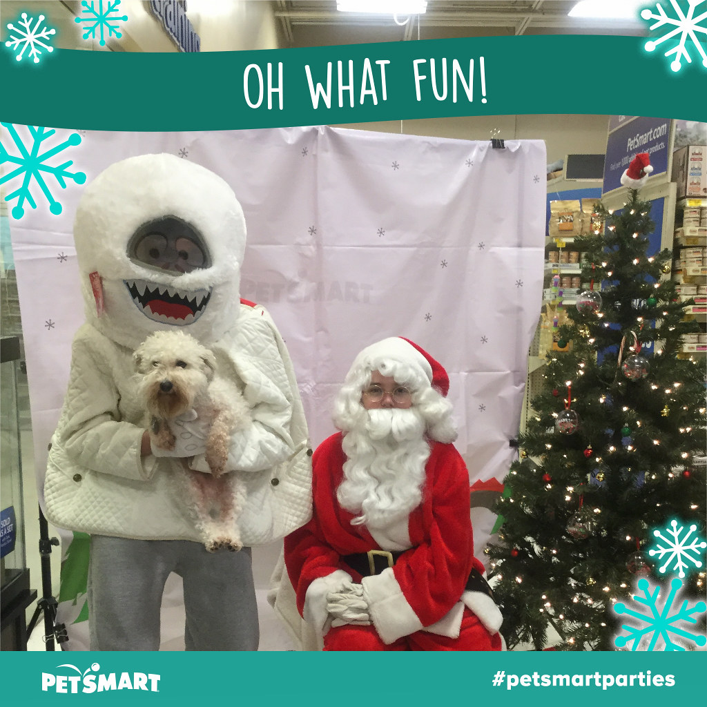 Petsmart Christmas Hours.Photos With Santa At Petsmart Bumble The Abominable Snow M