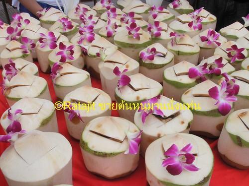 มะพร้าวไทย Thailand Coconut | by RataJIT